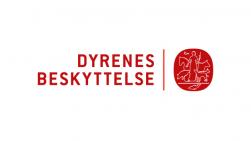 db_logo_624