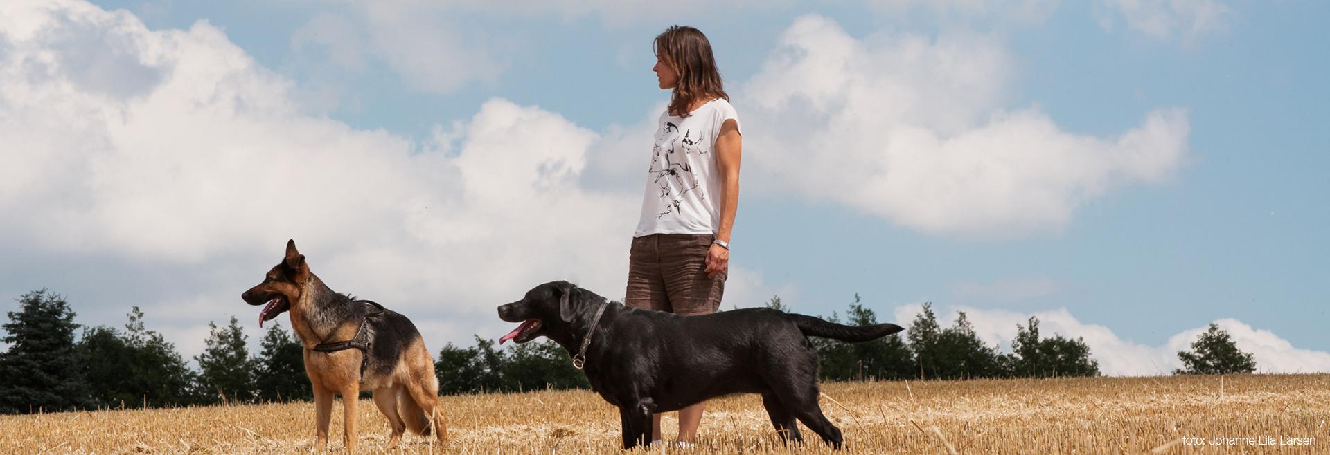 Hundeluftning hos Sonja - V.I.Pets
